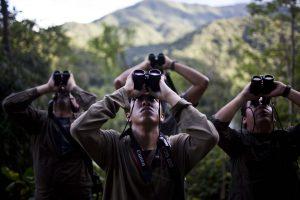 Peru bird watching paradise