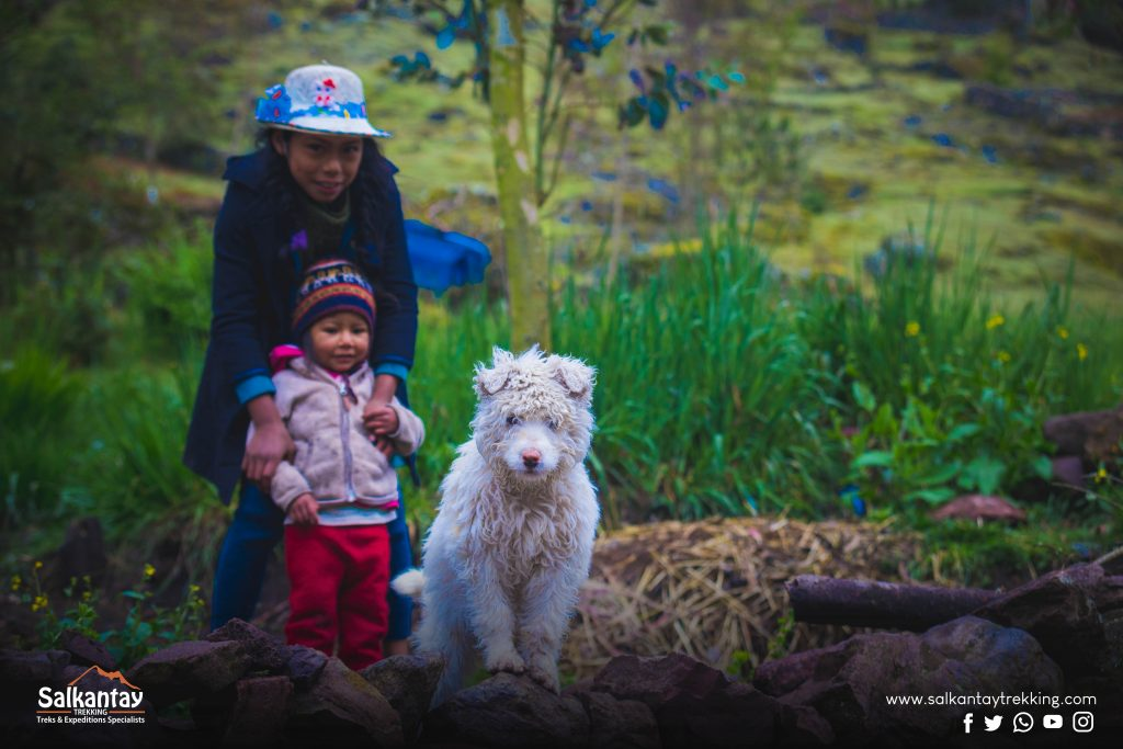 Children and dogs at Lares trail
