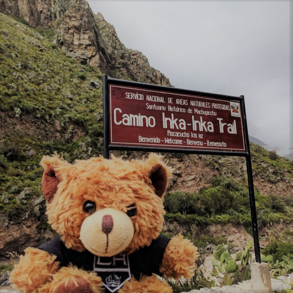 Teddy bear on Inka Trail