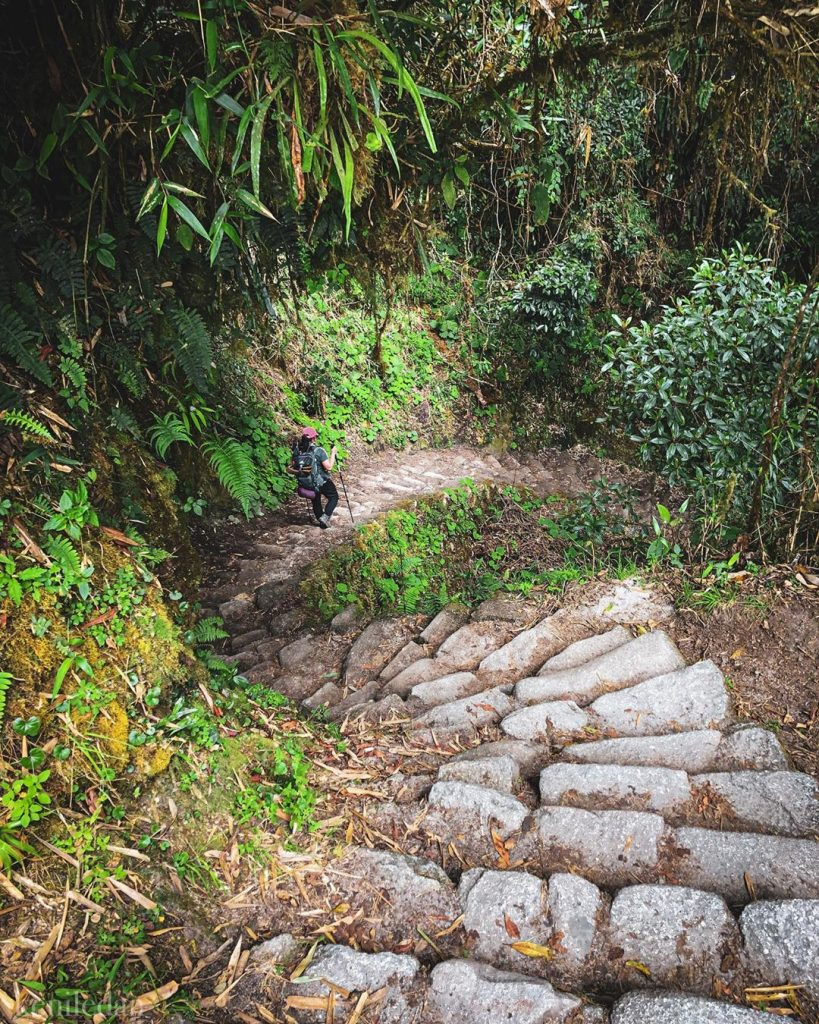 Ancient paths at Inca Trail