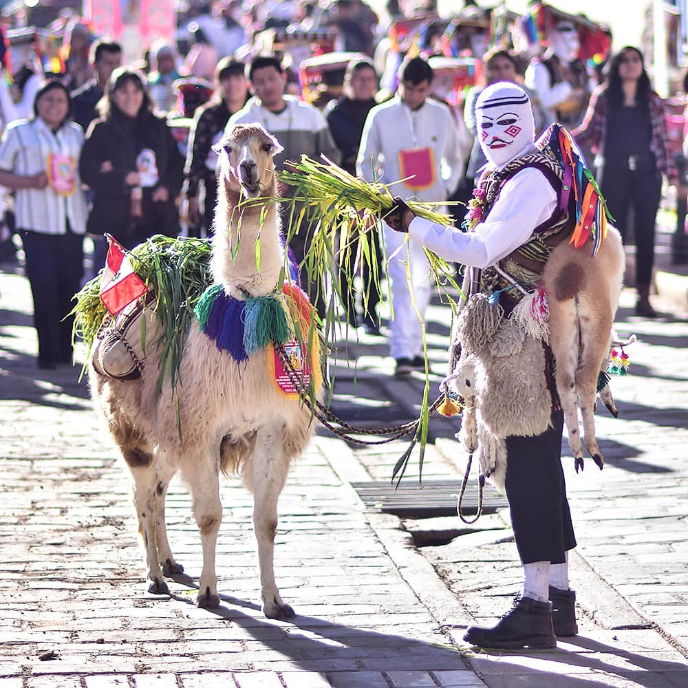 Man and llama at Cusco's street.