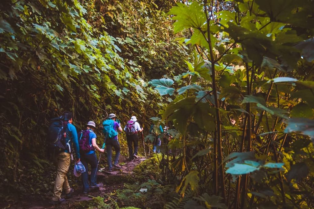 Hike, hikingboots, and boots, travel Peru and Cusco Salkantay