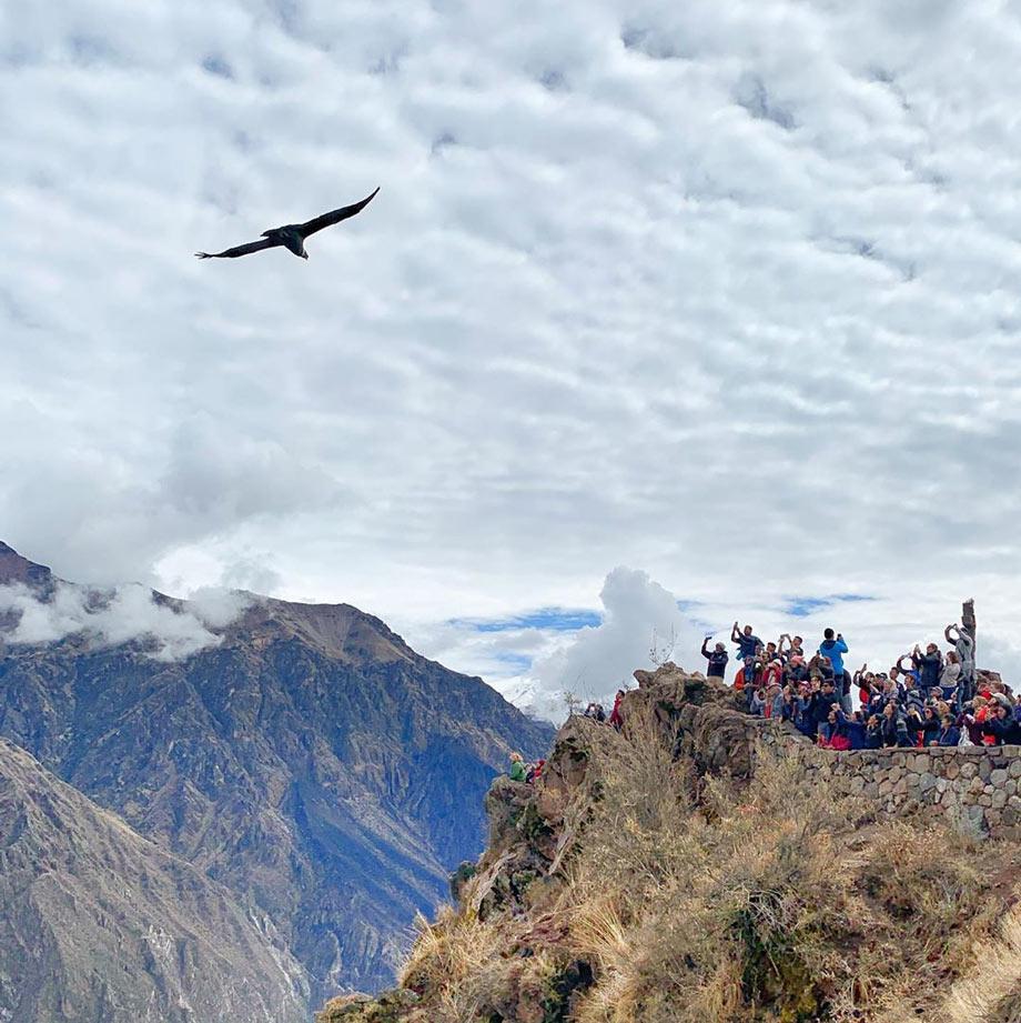 Colca Canyon, Arequipa, Peru attractions
