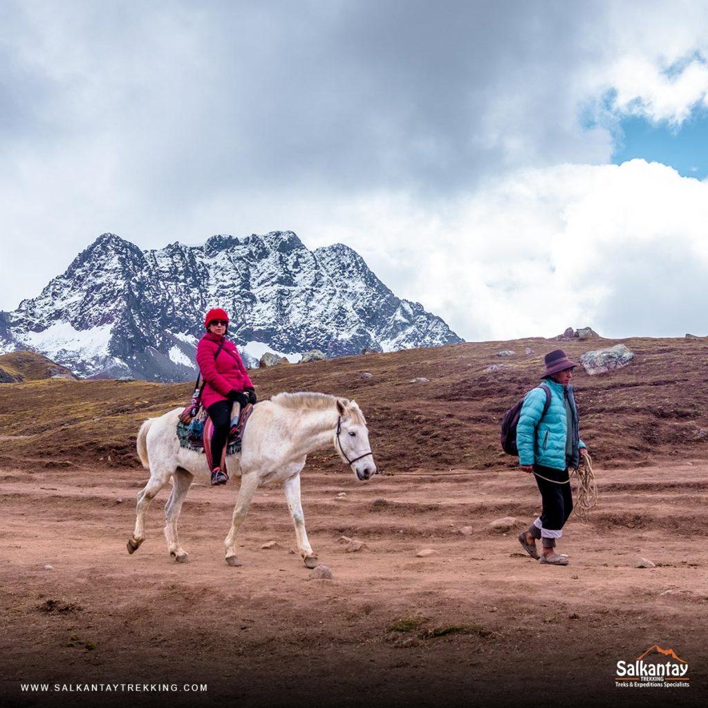 horses in Rainbow Mountain