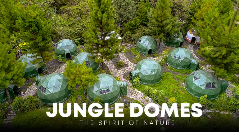 Jungle Domes - Jungle Campsite
